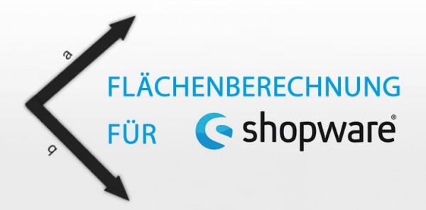 flaeche1